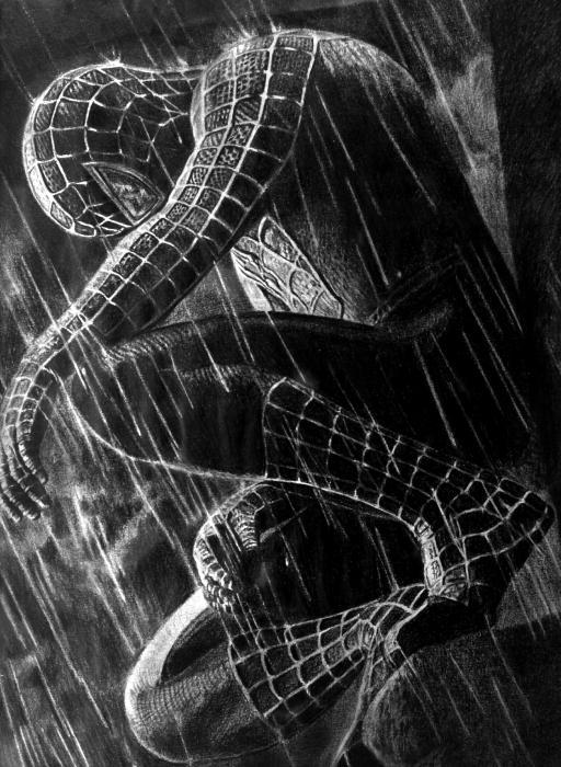 Black Spiderman Logo Wallpaper Portrait Of Spider Man By Antonioliviu On Stars Portraits 3